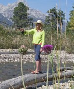 Jane fly fishing in the Tetons