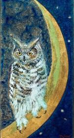 An Owl On The Moon