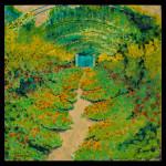 The Grand Nastertium Walkway - Le Grand Passage de Capucine